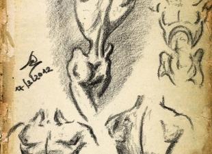 Gesture drawing #11