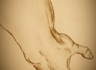 Anatomy work – Hand sketch