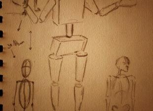 Anatomy Studies #3