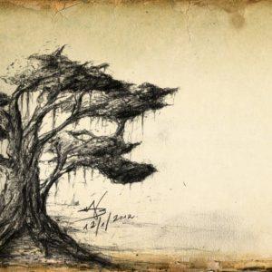 ציורים בעיפרון